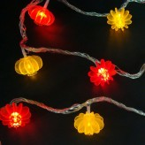9M Lantern Lights