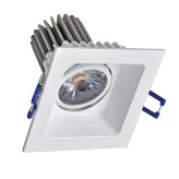 8W Tilt Down Light