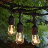 45ft Patio String Lights and Bulbs